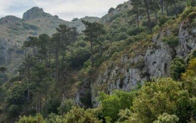 El Benicadell