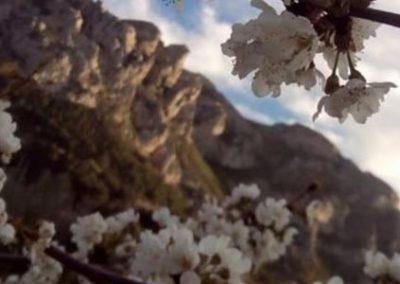 29 MARÇ Vall de Gallinera